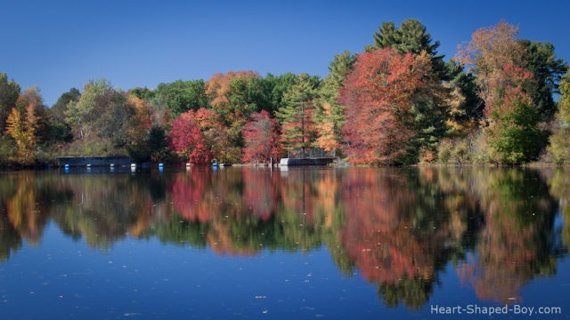 Powder Mill Pond