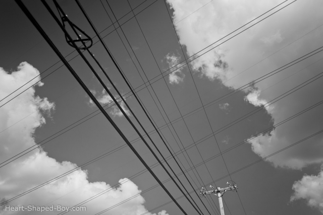 Many Wires II
