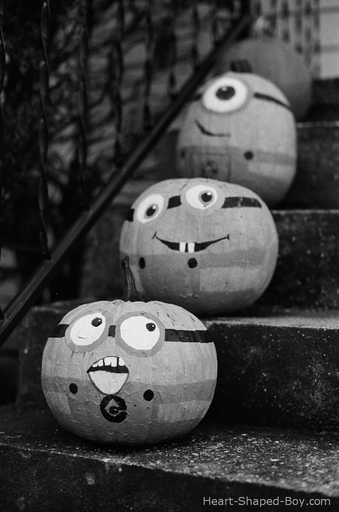 Step Pumpkins
